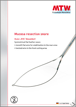 Mucosa resection snare